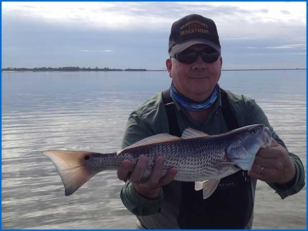 Jeff Conrad with a Tampa Bay Redfish caught flyfishing in January 2015