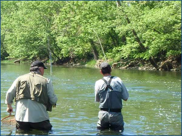 streamer caught trout on Brookville tailwater