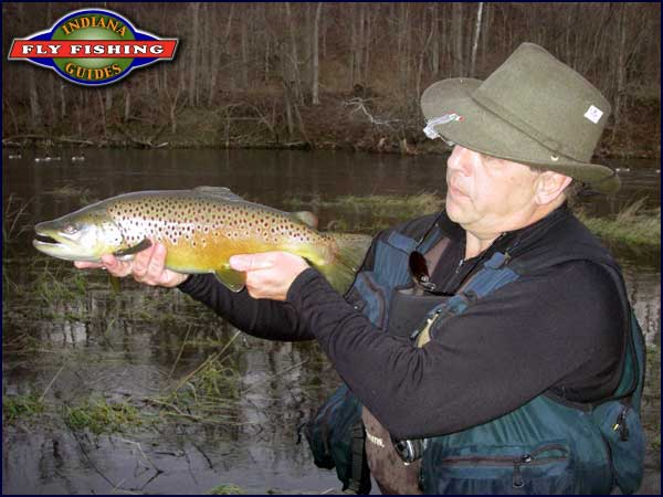 Ed Devine with a Brookville brown trout on 1/6/2012